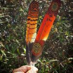 nathan patterson aboriginal feathers
