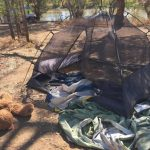 minyerri aboriginal housing crisis 2