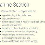 WA police canine aboriginal girl