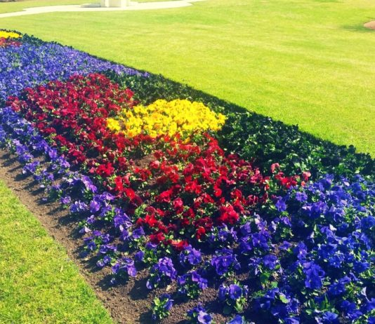 MELTON CITY COUNCIL ABORIGINAL FLAG FLOWERS GARDEN