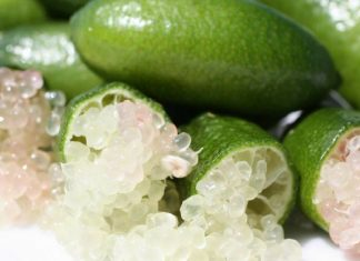 finger limes aboriginal superfood super fruit