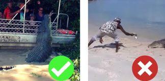 racist media indigenous yolngu aboriginal crocodile tourism