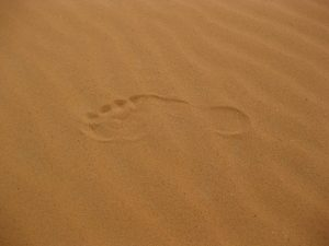 desert sand aboriginal footprint