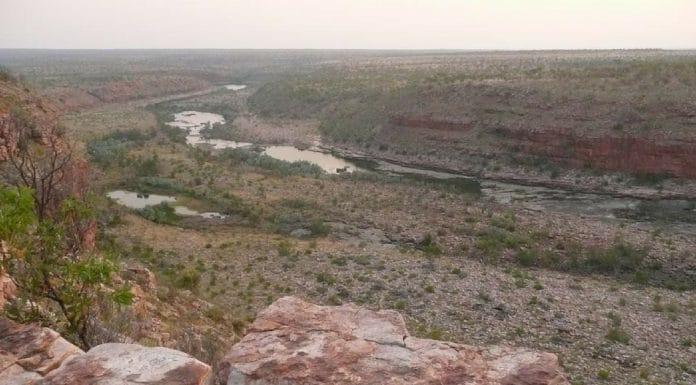 oombulgurri forrest river massacre