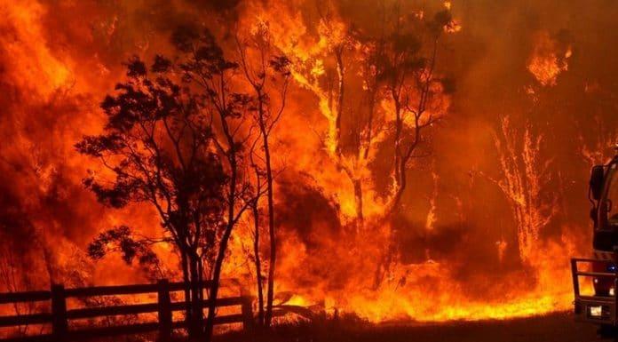 BUSHFIRE ABORIGINAL FIRE PRACTICES AUSTRALIA