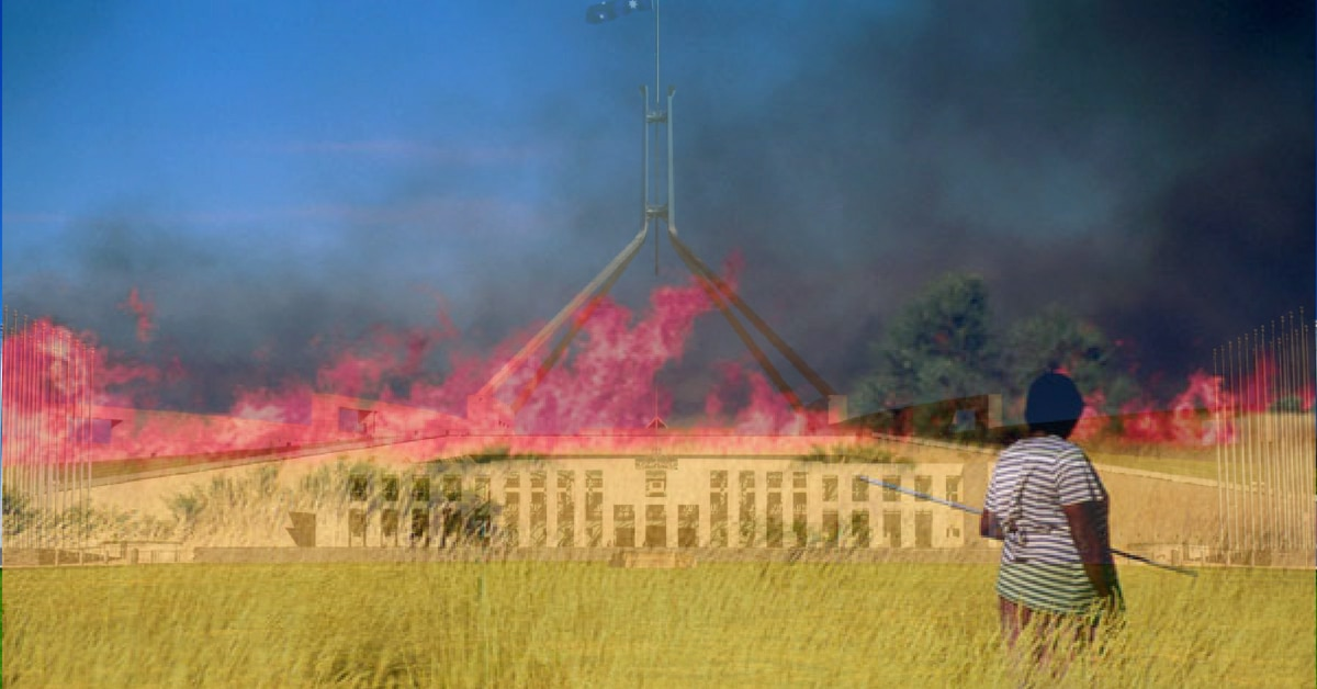 Burn it down: the Indigenous solution to Australia's leadership