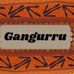 gangurru kangaroo facts nathan patterson aboriginal art