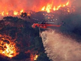 BUSHFIRES AUSTRALIA ABORIGINAL PROTECTION ENVIRONMENTAL SUSTAINABILITY