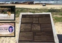 fraser island history white aboriginal history